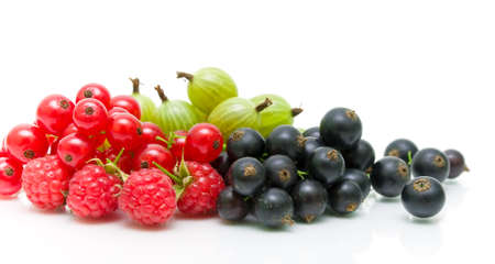 ripe berries. red and black currants and gooseberries on a white background - horizontal photo. Stock Photo - 18596479