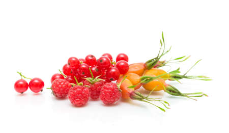 ripe berries - raspberry, red currant and rose hips on a white background. horizontal photo. Stock Photo - 18786430