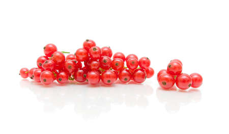 ripe red currants on a white background with reflection. horizontal photo. Stock Photo - 18786422