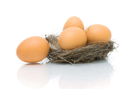 eggs in the nest on a white background with reflection close-up. horizontal photo. Stock Photo - 18786440