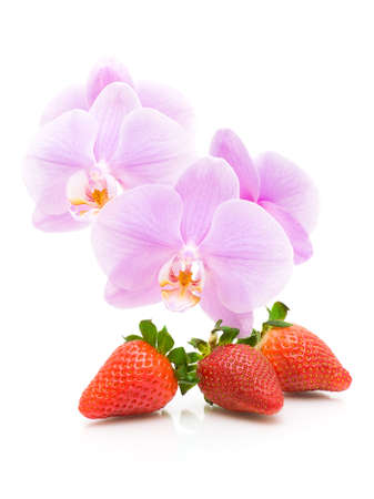 ripe strawberries and blossoming branch orchid close-up on a white background. vertical photo. photo