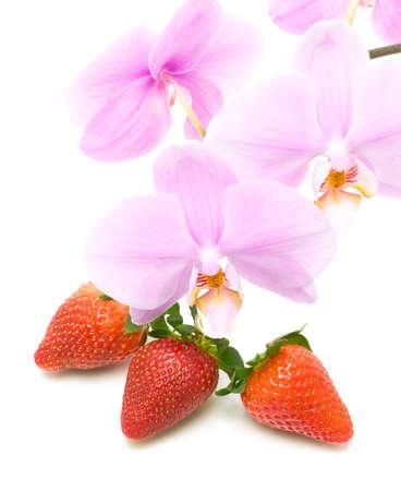 flores y frutas. fresas maduras y una rama en flor orqu�dea primer plano sobre un fondo blanco. foto vertical. photo