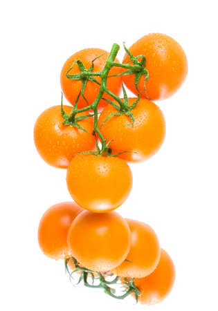 Fresh orange tomatoes  in water drops on a white background close up with reflection. horizontal photo. photo