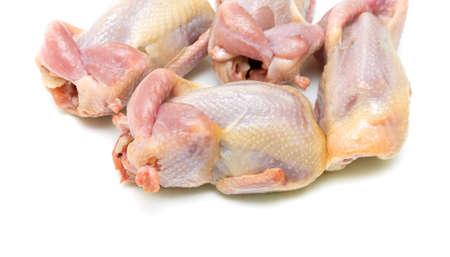 guinea fowl: fresh quail carcass closeup on a white background. horizontal photo.