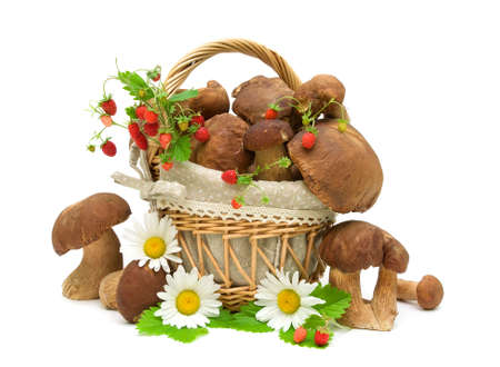 basket with mushrooms, ripe wild strawberry and daisy flowers on a white background.  photo