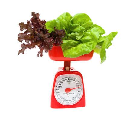 varied: fresh lettuce and kitchen scales isolated on white background. horizontal photo.
