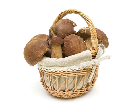 basket with forest mushrooms isolated on white background close-up. horizontal photo. Stock Photo