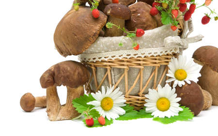 still-life with mushrooms, strawberries and daisies on a white background close-up. horizontal photo. photo