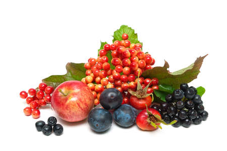 arbol de manzanas: frutas y bayas de cerca sobre un fondo blanco. foto horizontal. Foto de archivo