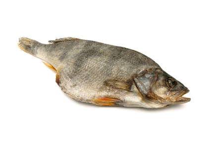 desiccation: Dry dried fish isolated on white background. horizontal photo. Stock Photo