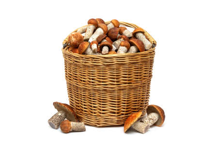 wild mushrooms: wicker basket with mushrooms on a white background. horizontal photo. Stock Photo