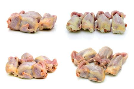 Carcasses of quails isolated on white background. horizontal photo.