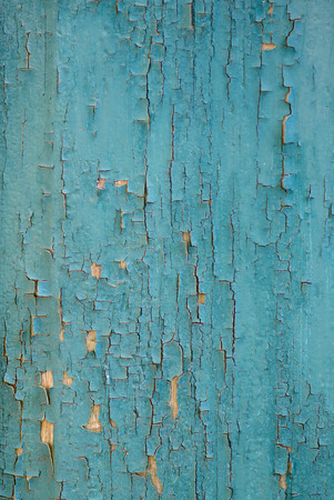 aqua background: Old green paint cracks on the tree structure