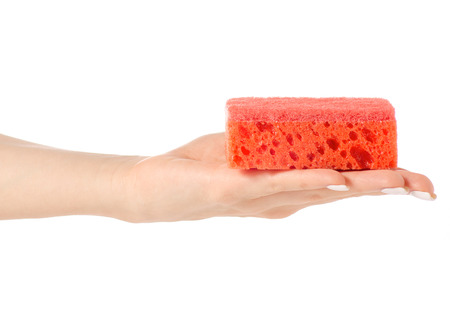 Female hands sponges for washing dishes on white background isolation