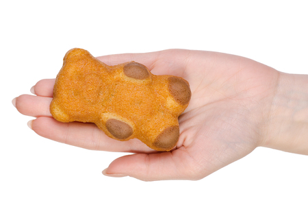 Biscuit in the form of a bear in hands on a white background isolation