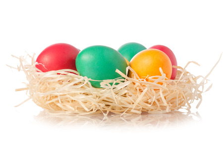 Easter color eggs in the nest on white background isolation