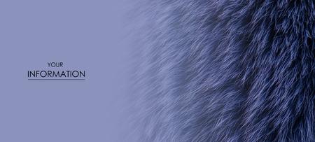 Blue fur macro villus texture detail nature pattern on blur background Imagens