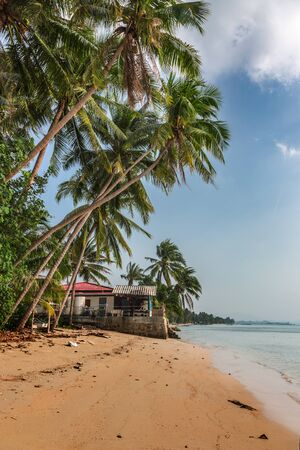 Coco palms on sunny beach and turquoise sea in Ko Samui paradise island. 写真素材 - 150533343
