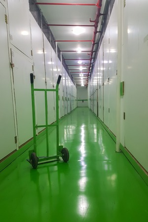 Long corridor, green floor and cart, self-storage facilities interior, units with locks on both sides