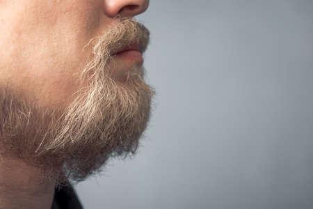 Close-up portrait of a young man with a blond beard. Scandinavian wild beard.
