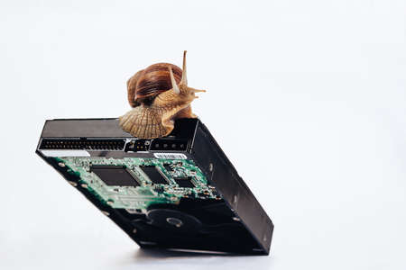 The snail is sitting on the hard drive. 版權商用圖片