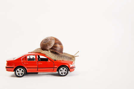 A horned snail sits on a red car.