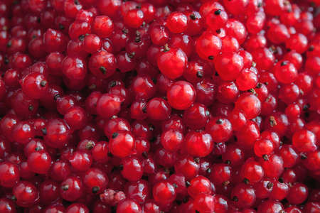 heap: heap of red currants