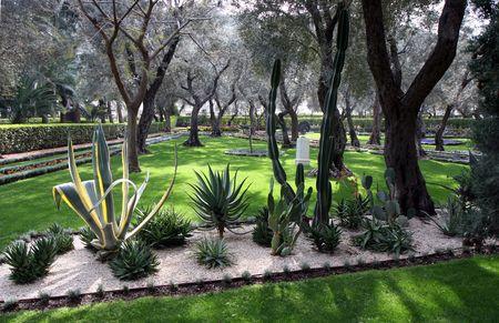 Bahai Cactus gardens photo