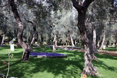 bahai: Bahai gardens