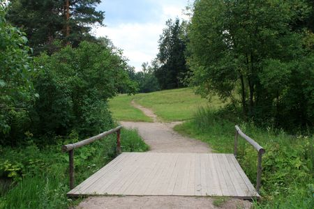 tropical evergreen forest: A path in the middle of russian park at Pavlovsk