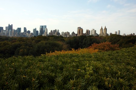 Weergave van de herfst in Central park in New York  Stockfoto