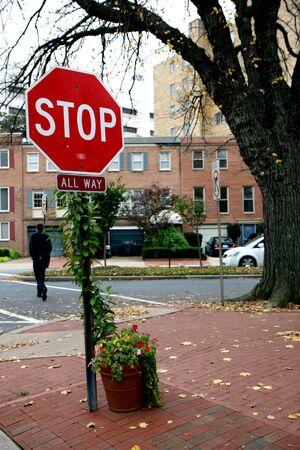 Stop sign a plant at Washington DC photo