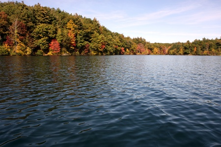 Walden Pond in Massachusetts in de herfst Stockfoto