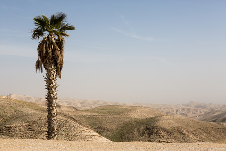 Israely mountains in spring