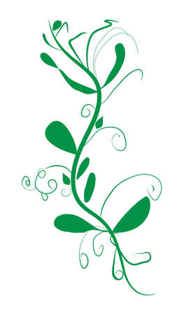 potherb: Twig with leaves abstract vector illustration