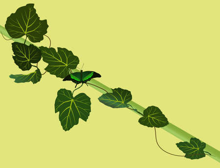 subsist: Butterfly on a branch vector illustration