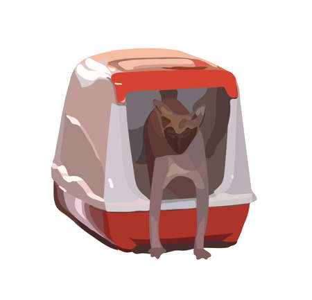 snug: Cat breed Sphynx comes out of the house-toilet. Illustration. Stock Photo
