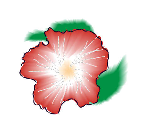 red hibiscus flower: Red hibiscus flower illustration Stock Photo