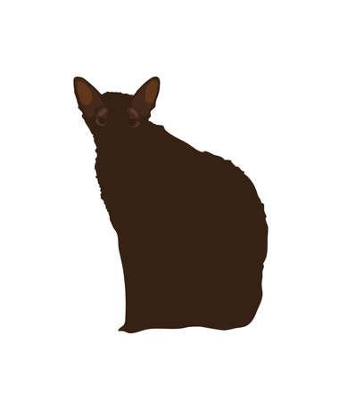 Black cat on a white background. Illustration.