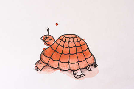 Turtle painted watercolor. Illustration.