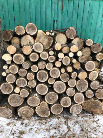 The background consists of sawn square wooden beams stacked on top of each other in the form of a woodpile near the wooden wall of the barn. Annual rings are visible on the cross-section of the trunks.