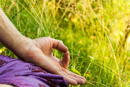 gyan: A hand of a meditating man with Gyan mudra  The picture is taken in a forest during summer time, there is greening grass, herbs and trees in the background  Stock Photo