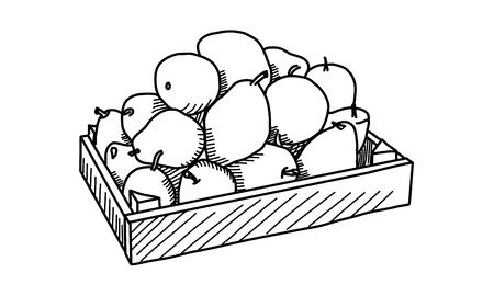Fruits in the wooden box. Vector illustration Ilustrace