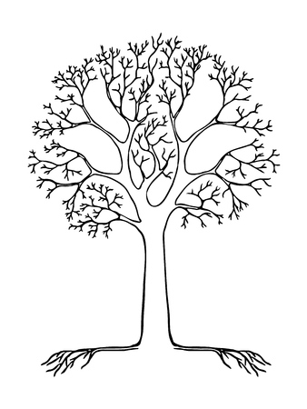 Tree. Black line vector. Empty places to enter 4 words Ilustrace