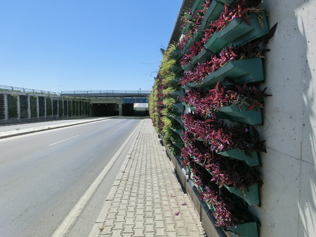 Vertical flower beds for plants on the wall along the road