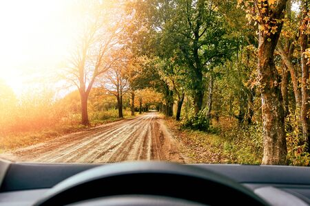 Driving car on road in the autumn forest. Leaf fall. 写真素材