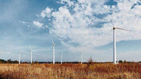 Molinos de viento en un campo con cielo azul. Energía alternativa.