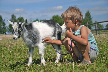 medical exam: The boy imagined himself the vet and treat the goat