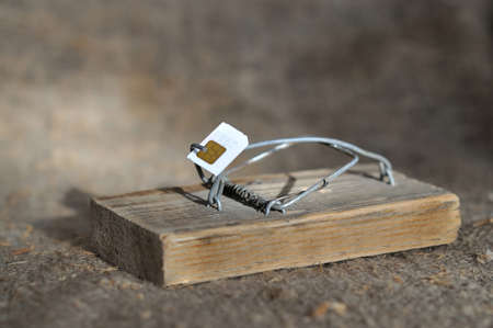 mouse trap: Old wooden mouse trap with bait from the SIM card. close-up Stock Photo