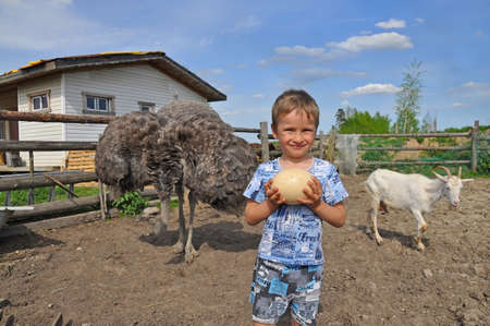 aviary: Russian farm. A boy holding an egg African ostrich in the aviary with the animals